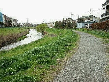 すぐ近くにある黒目川遊歩道は散歩にも最適