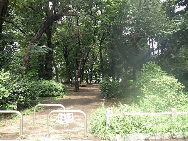 緑あふれる大きな公園もすぐ近く