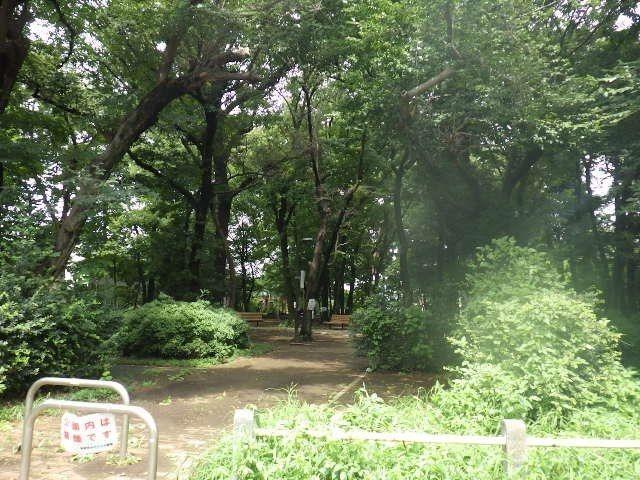 緑の多い公園がすぐ近く