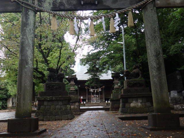 近所の緑溢れる神社