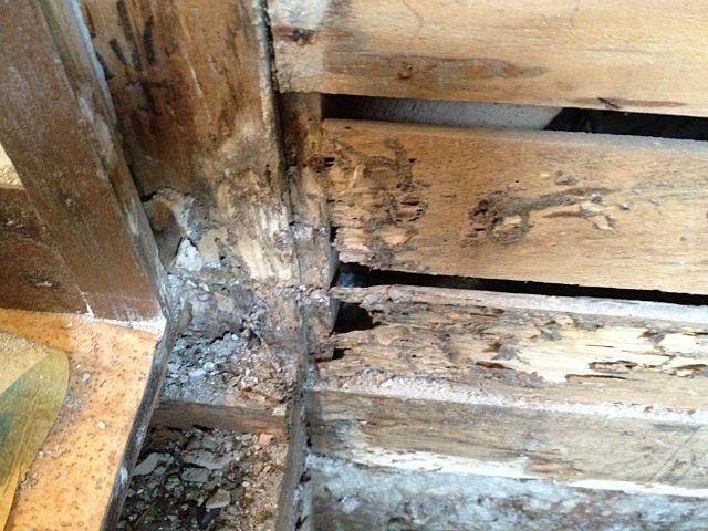 白蟻に食われた柱