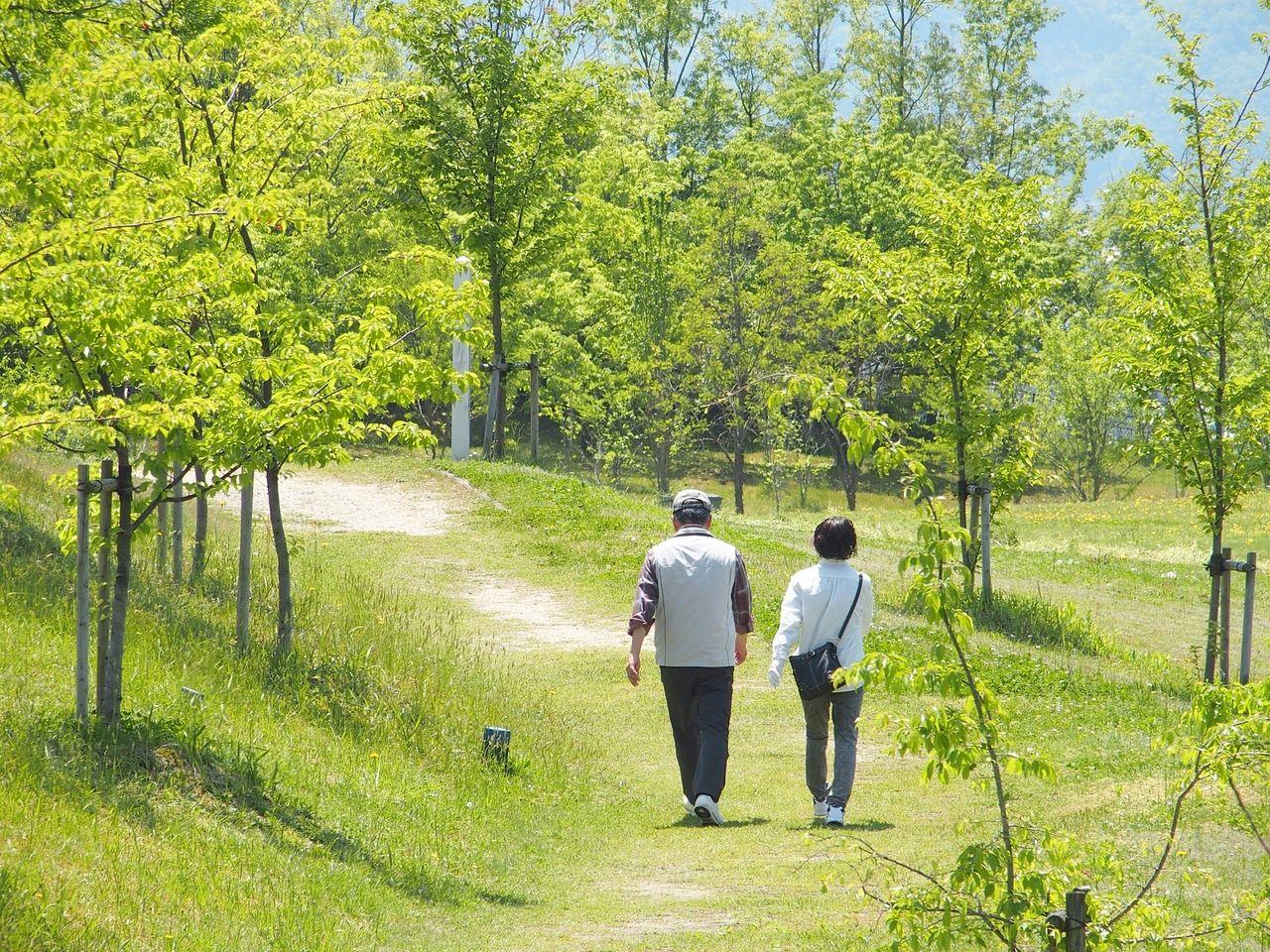 市内を楽しく歩いて健康に!