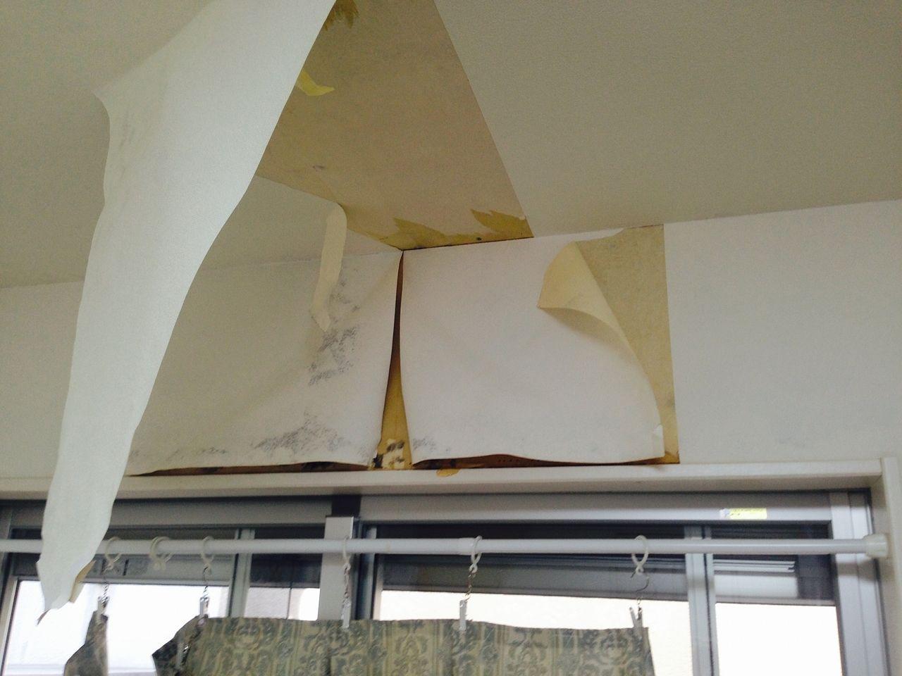 天井からの水漏れの様子