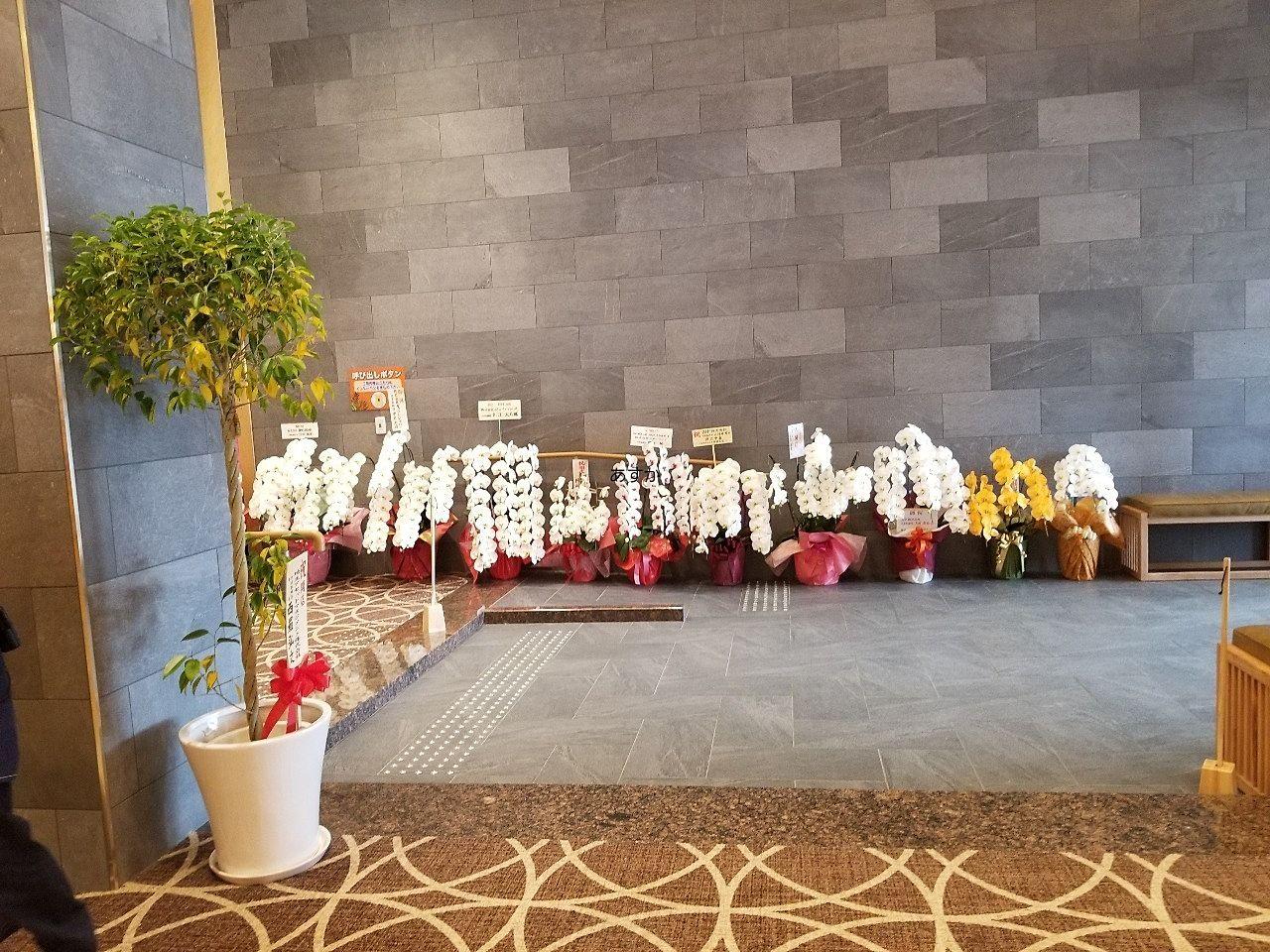 開店祝いの花が並ぶ入口