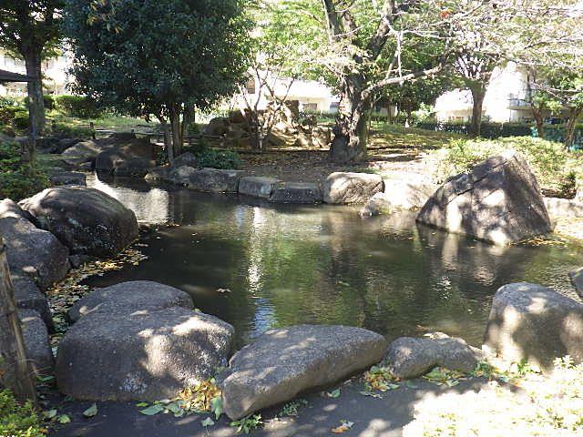 桜の下の鑑賞池
