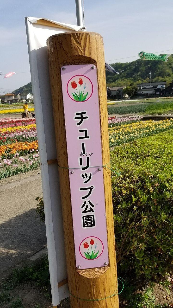 チューリップ公園の印