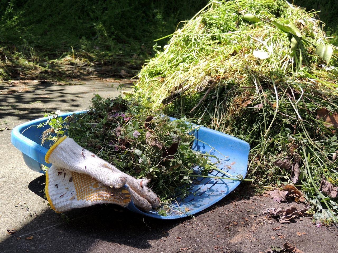 これからの季節。アパート、駐車場など雑草が生い茂って大変。何とかしなければ!
