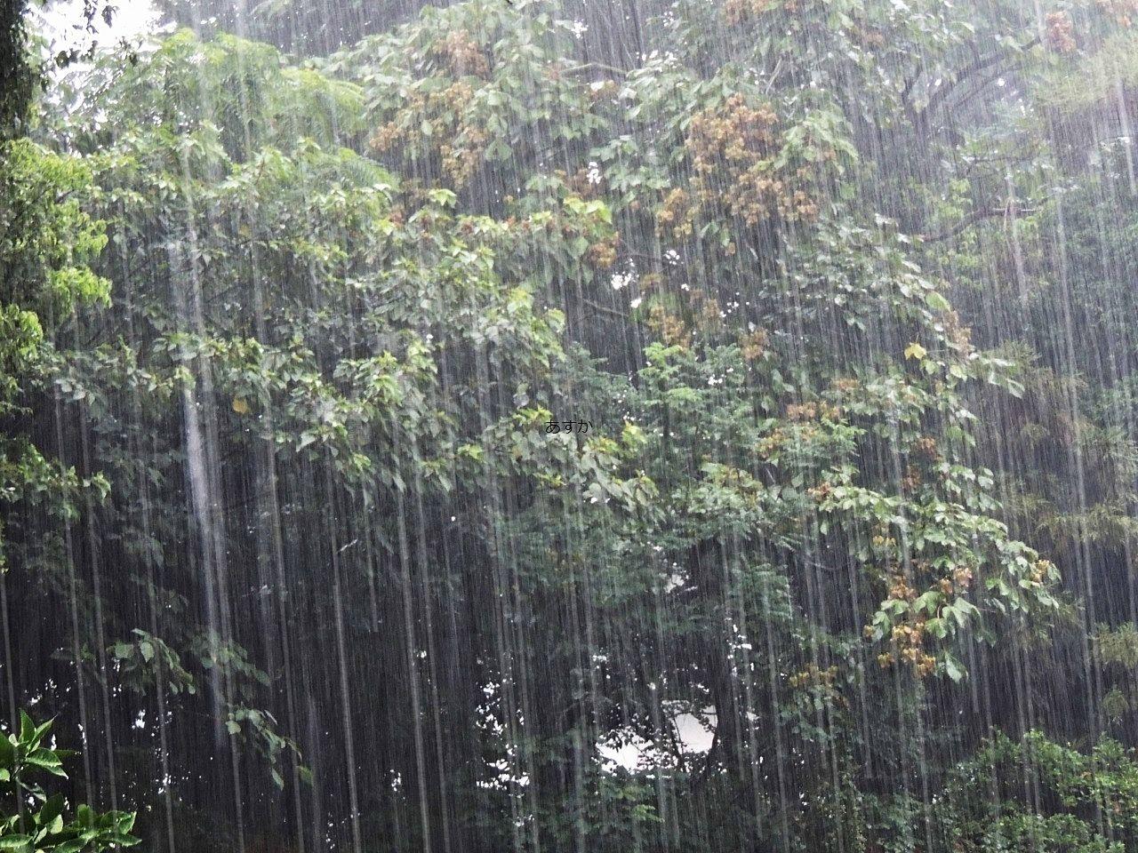 降り続く雨