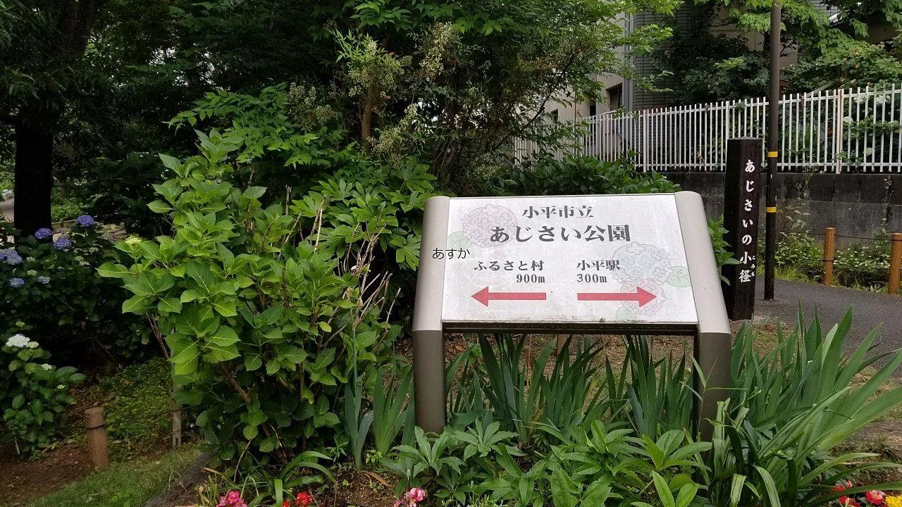 緑道からの入口