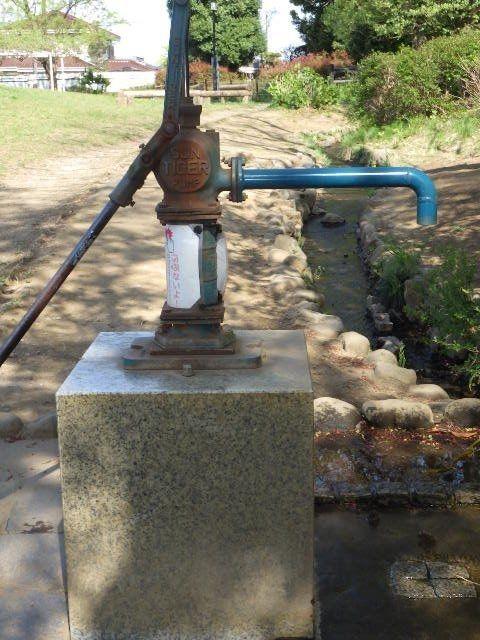 井戸汲み上げのポンプなど子供さんには初めてみるものでしょう