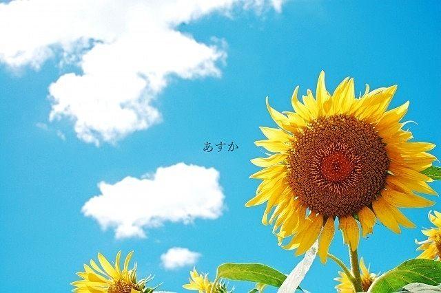 夏休みを取らせて頂きます。