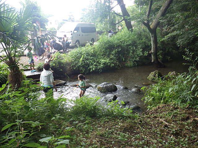 竹林公園下の湧水池