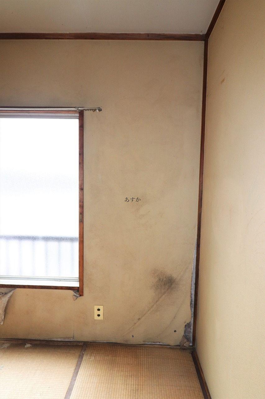 カビとはがれのある壁