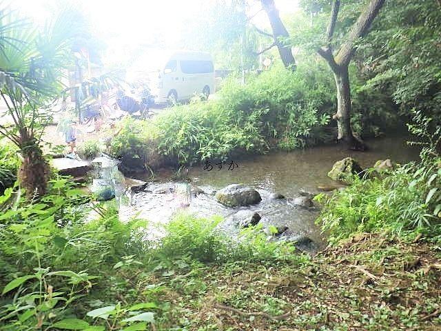東久留米南沢の湧水池