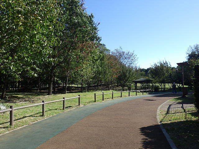 泉小学校跡地に広い公園。来年開園されます