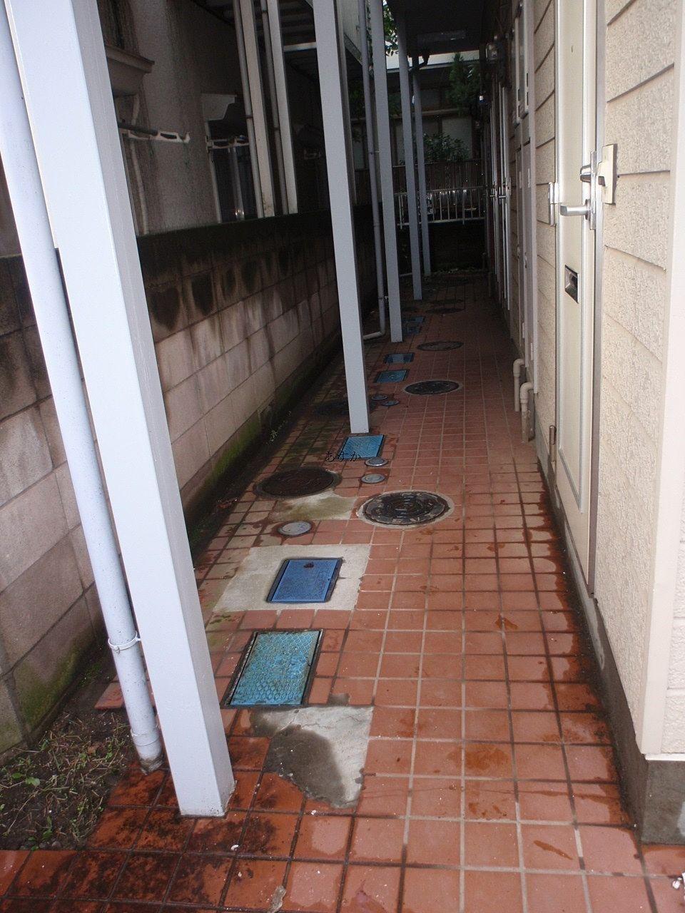 苔などのついた廊下の様子