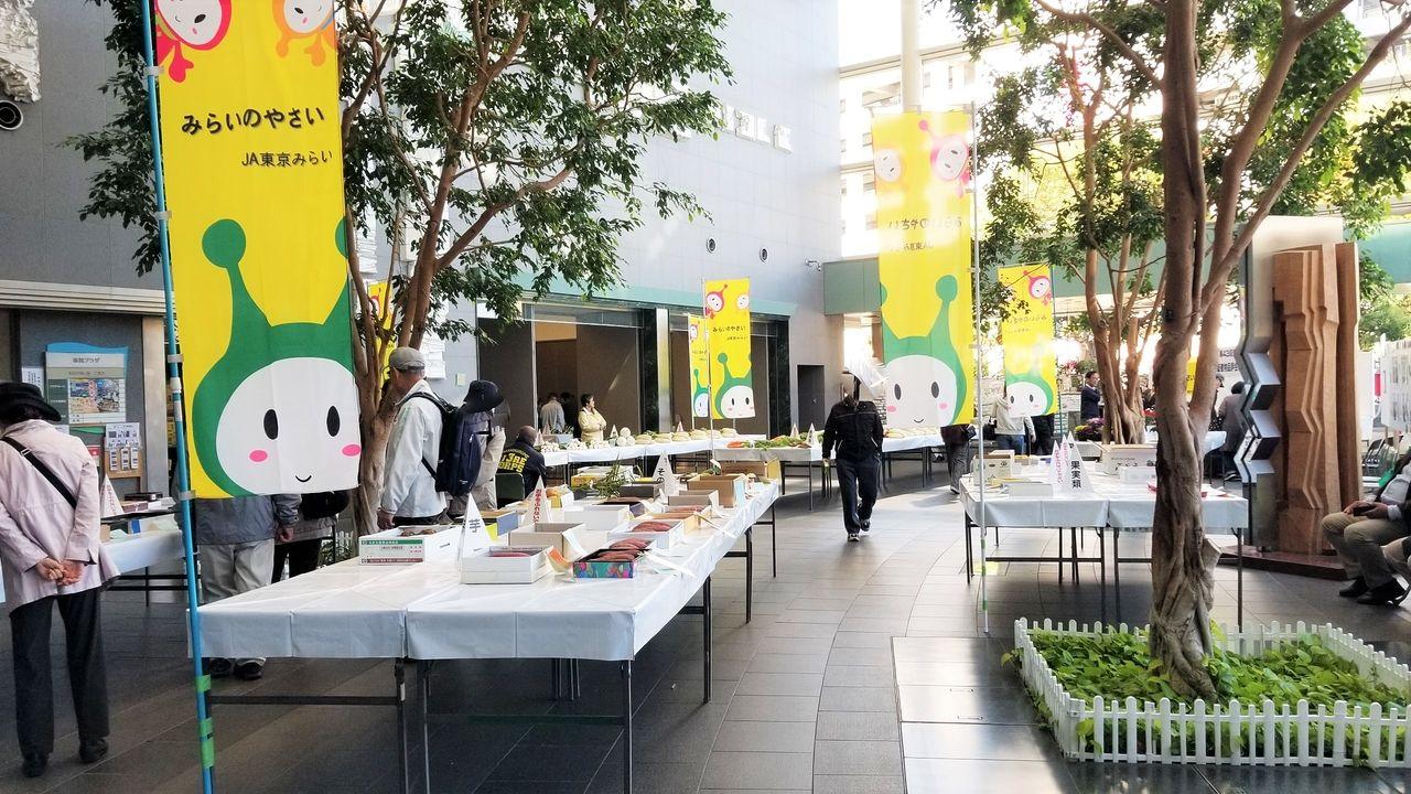 市民プラザ屋内では市民農園品評会が開催