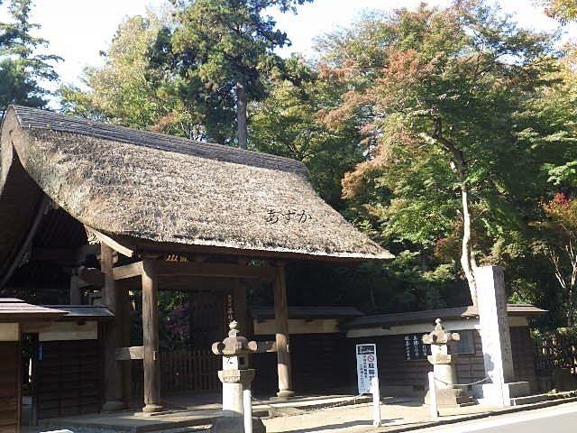 新座の名刹平林寺。紅葉も見ごろ