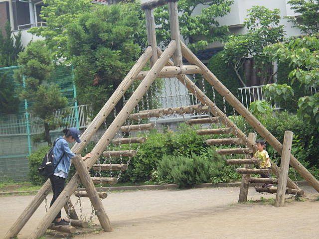 アスレチック的な木の階段