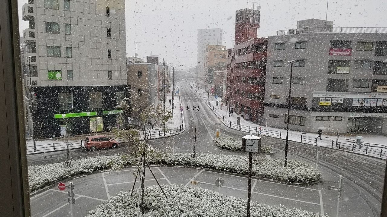 3月最後の日曜。外出自粛と雪に見舞われて