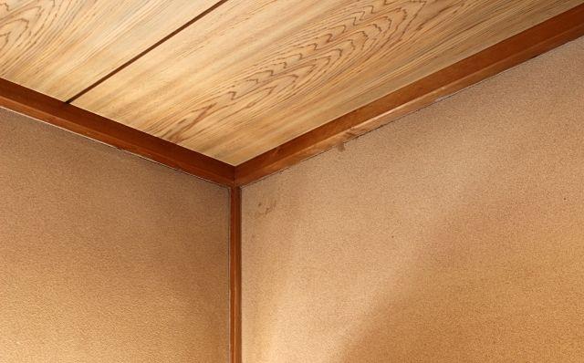 木造家屋の天井裏にひそむネズミ