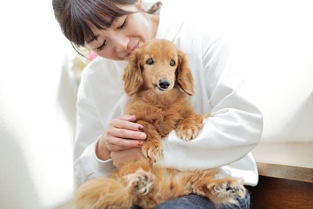 ペット飼育できる賃貸