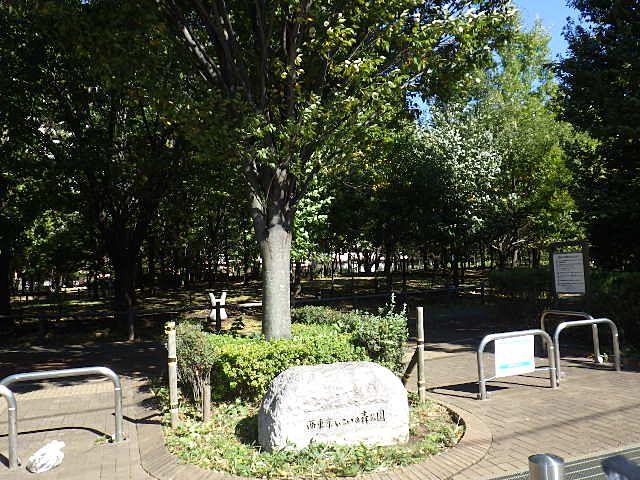 南口の広大な公園