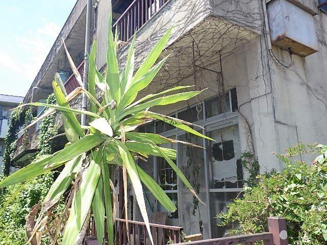 外壁などの修繕もされていない状態のテラスハウス