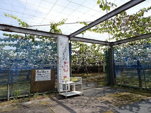入口の前にあるぶどう園の看板