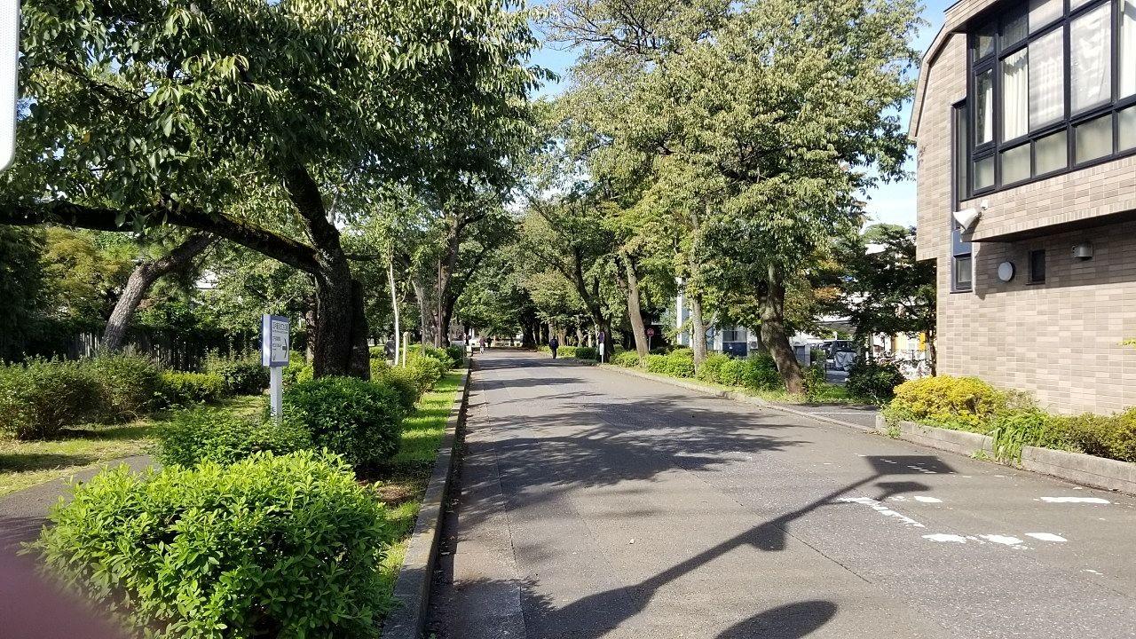 園内に走るサイクリングロード