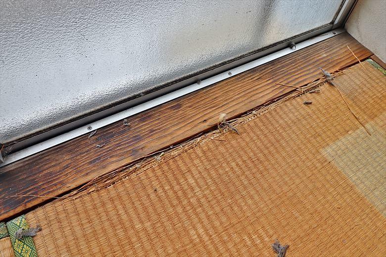 陽当たりが良いので傷んだ木枠