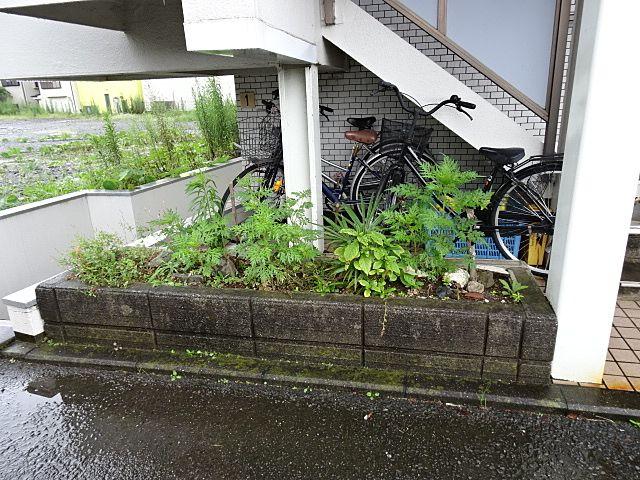 コンクリートブロック製の花壇?