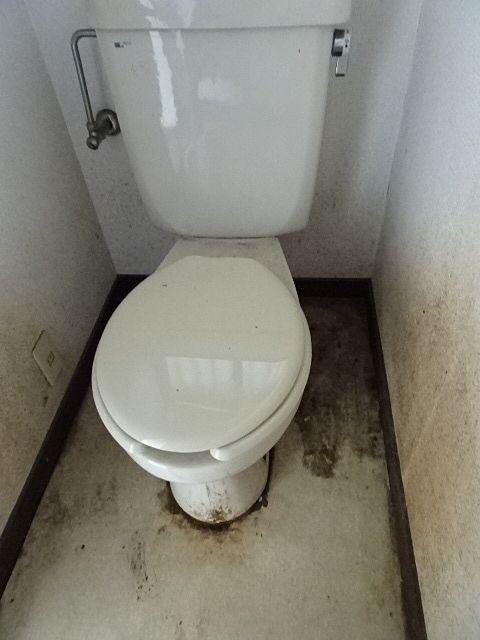 トイレの床も壁。便器の中も真っ黒に変色