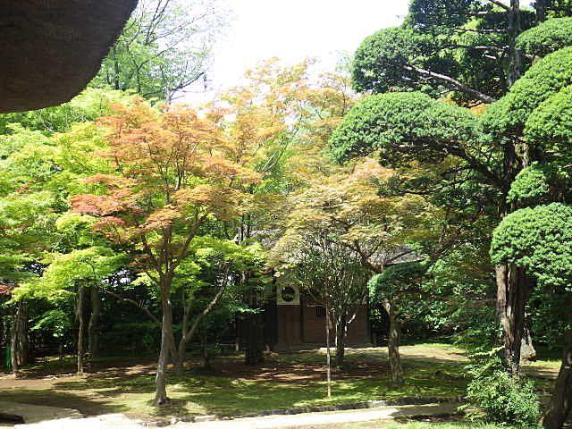 秋になると美しい紅葉が見られる平林寺境内