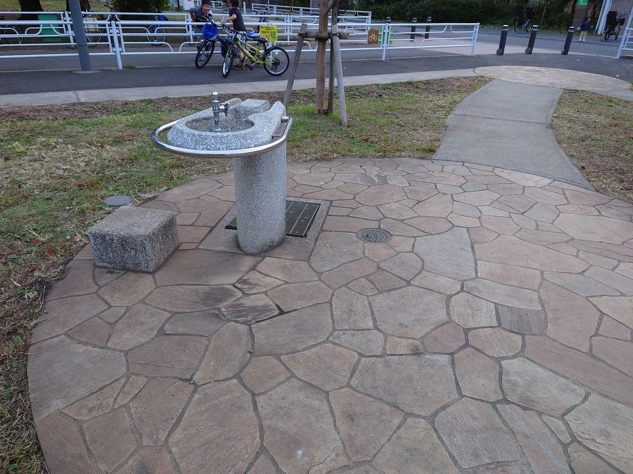 公園には必須の水飲み場