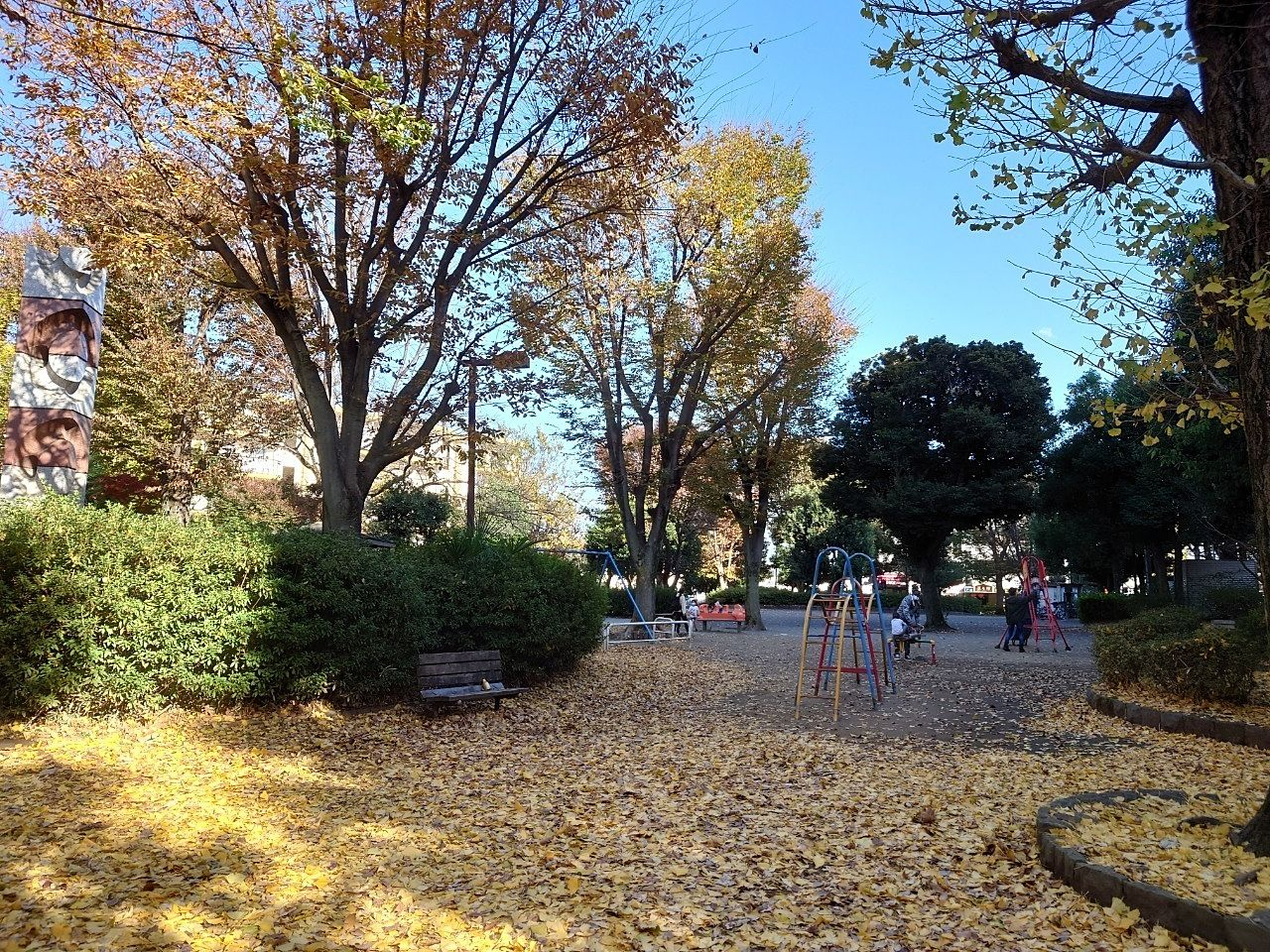 晩秋のイチョウ公園・ひばりが丘谷戸