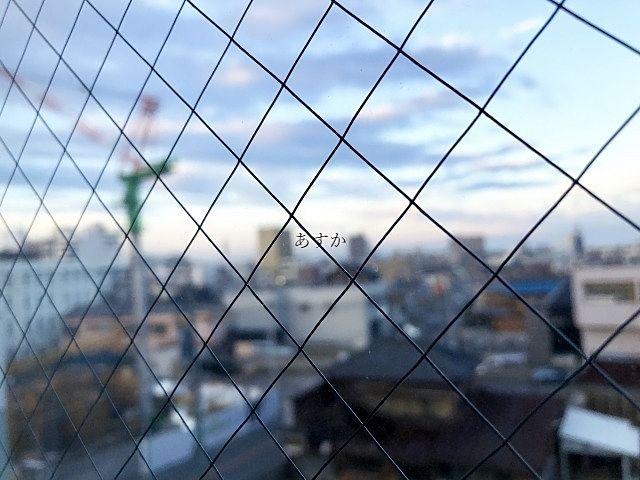 防火仕様の網入りガラス
