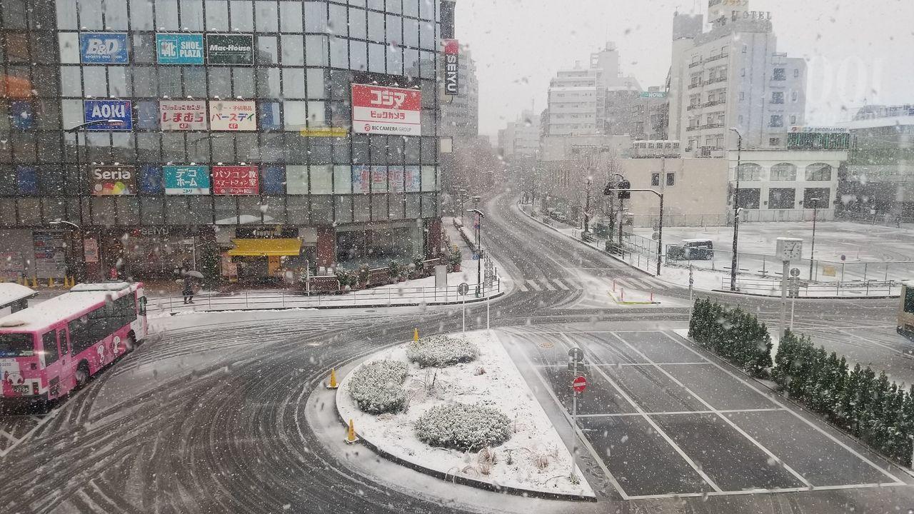 2020年3月には積雪が見られました。