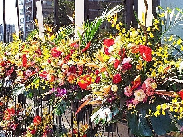 新規オープンのお祝いのお花