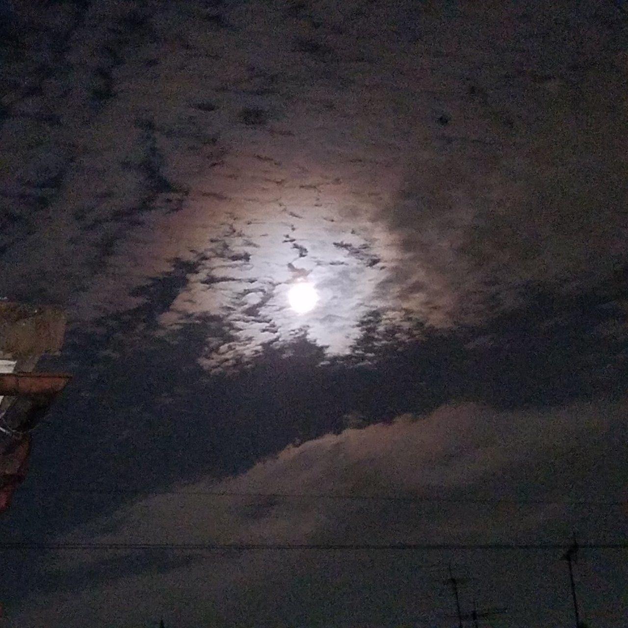 中秋の名月の次の日