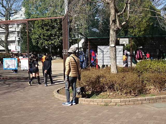 団体で球技を楽しむボール広場