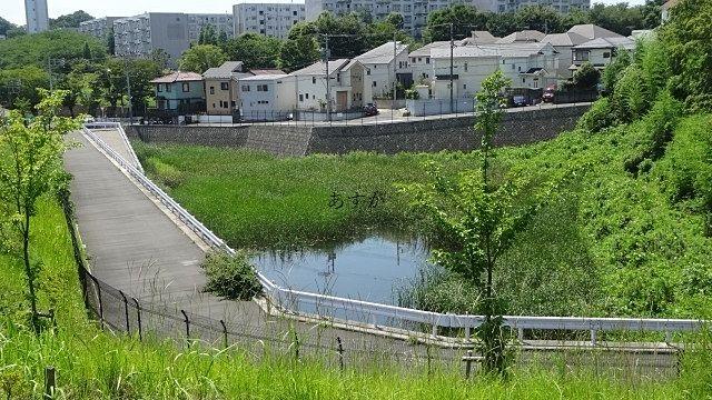 近隣の水のある場所の確認