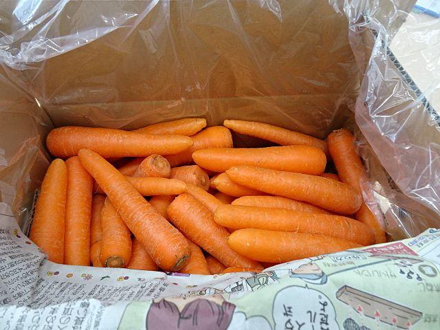 ツヤツヤとしたオレンジ色のニンジン