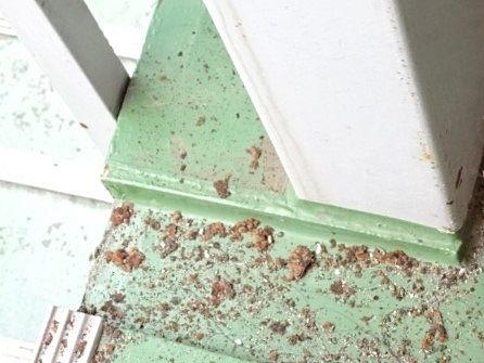 天井の腐食した錆びが床に落下
