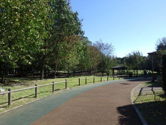 整備された広い歩道