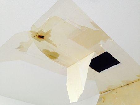 天井からの雨漏りの写真